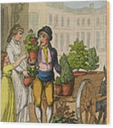 Cries Of London The Garden Pot Seller Wood Print