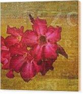 Crimson Floral Textured Wood Print
