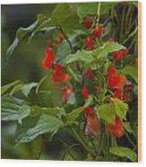 Crimson Flowers Wood Print