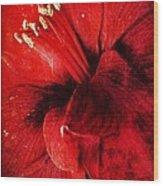 Crimson  Wood Print by Natalya Karavay