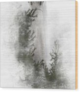 Crisp Point Lighthouse Michigan Wood Print