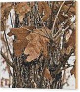 Crispy Leaves Wood Print