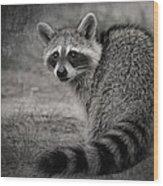 Critter Corner Wood Print