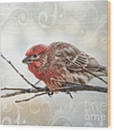 Croching Finch Wood Print