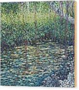 Crocodile Creek Wood Print