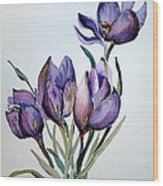 Crocus In April Wood Print by Mindy Newman