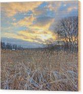 Crooked Lake Willows Wood Print