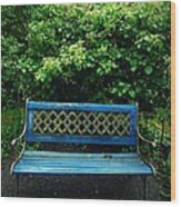 Crooked Little Bench Wood Print