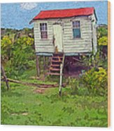 Crooked Little House - Orange Cats Wood Print
