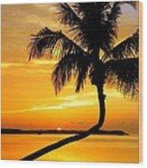 Crooked Palm Wood Print