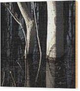 Crooked Stick Wood Print