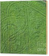 Crop Circles Wood Print