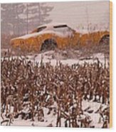 Crop Rotation--vets This Year Wood Print by David Bearden