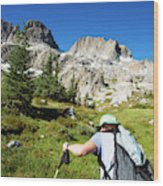 Cropped Rear View Of A Female Hiker Wood Print