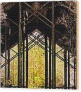 Crosby Arboretum Open Air Outdoor Pavillion Wood Print