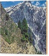 Crossing The Himalayas Wood Print
