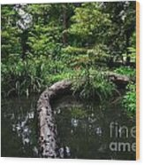 Crossing The Pond Wood Print