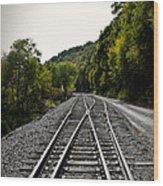 Crossing Tracks Wood Print