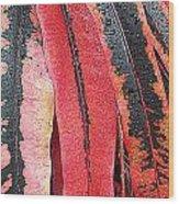 Crotans With Dew Wood Print