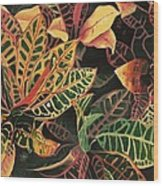 Croton Leaves Wood Print