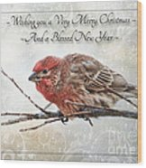 Crouching Finch Christmas Greeting Card Wood Print