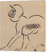 Crouching Monkey Wood Print