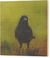 Crow 13 Wood Print