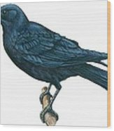 Crow Wood Print by Anonymous