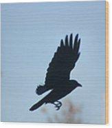 Crow In Flight 5 Wood Print