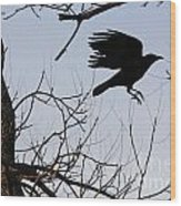 Crow In Flight Wood Print