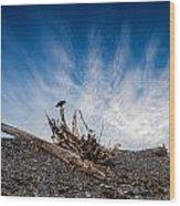 Crow On Driftwood Wood Print