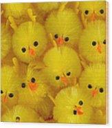 Crowded Chicks Wood Print