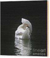 Crown Of Feathers II Wood Print by Lynn Jackson