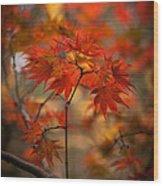 Crown Of Fire Wood Print