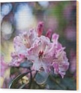 Crown Of Rhodies Wood Print