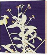 Crown Of Thorns - Indigo Wood Print by Shawna Rowe