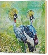 Crowned Cranes Wood Print