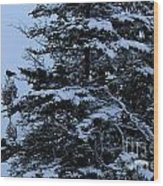 Crows Perch - Snowstorm - Snow - Tree Wood Print