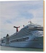 Cruise Line - Miami Florida Wood Print