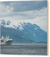 Cruise Ship In The Sognefjord In Norway Wood Print