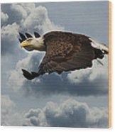 Cruisin' Altitude Wood Print