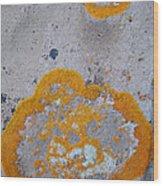 Crustose Lichen, Utah Wood Print