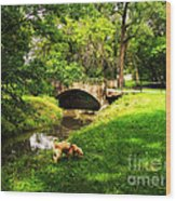 Cruz At Deer Creek Bridge Dwight Il Wood Print