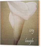 Cry Laugh Remember Wood Print