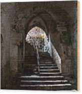 Crypt Of The Martyr San Marciano In Syracuse Wood Print