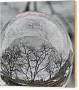 Crystal Ball Project 86 Wood Print