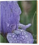 Crystal Blue Wood Print