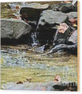Crystal Clear Waters Of Hurricane Branch Wood Print