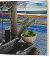 Crystal Cove Laguna Beach Wood Print