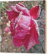 Crystal Rose Wood Print